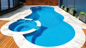 salt pool system